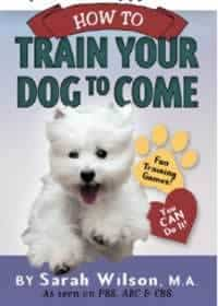 Train Your Dog To Come